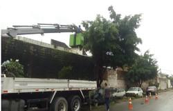 Mutirão de serviços atende Jardim Brasil, em Olinda  (Foto: Divulgação / Olinda)
