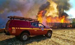 Aumento de casos de incêndios florestais liga sinal de alerta em Minas