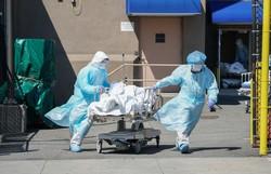 Estados Unidos contabilizam 5,2 milhões de casos de covid-19 (Foto: Bryan R. Smith/AFP )