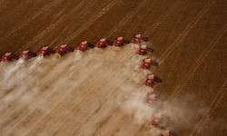 Ipea: exportações do agronegócio sobem 20,9% no 1º semestre