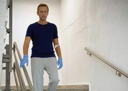 Navalny deixa o hospital e tem possibilidade de recuperação (Foto: Handout / Instagram account @navalny / AFP)