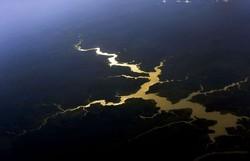 Governo destinará R$ 500 milhões para proteger mata nativa da Amazônia (Foto: Valter Campanato/Agência Brasil)