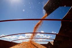 CNA prevê aumento da produção do agronegócio no próximo ano (Foto: Wenderson Araújo/CNA)