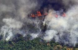 Com novo monitoramento, Inpe amplia resolução e revisita áreas críticas da Amazônia (Foto: AFP)