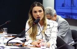 Deputada que defende ozonioterapia é internada com Covid-19 em Brasília (Foto: Vinicius Loures/Câmara dos Deputados)