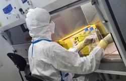 Pesquisadores desenvolvem tecido capaz de matar o vírus da Covid-19 (Foto: Jean-François Monier/AFP)