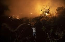 Governadores se comprometem no combate aos problemas ambientais (Foto: AFP )