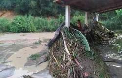 Após rompimento de represa, famílias ficam desalojas em Minas Gerais (Foto: Reprodução)