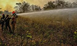 Salles inspeciona áreas em Mato Grosso atingidas pelo fogo (Foto: Mayke Toscano / Secom - MT / Arquivo)