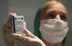 Alemanha está disposta a ajudar a Rússia com vacina Sputnik V (Alexander NEMENOV/AFP)