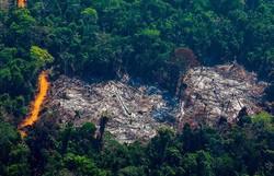 Desmatamento na Amazônia cresceu 33% entre 2019 e 2020 (Foto: AFP)