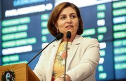 Simone Santana comemora sanção de lei contra violência doméstica a mulheres (Foto: Alepe / Divulgação)