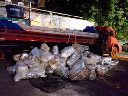 Polícia Federal apreende 1,5 tonelada de maconha em Carpina