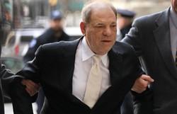 Harvey Weinstein nega acusações de estupro em tribunal de Los Angeles (Foto: SPENCER PLATT / GETTY IMAGES NORTH AMERICA / AFP )