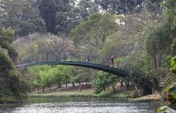 Parques municipais serão reabertos durante a semana em São Paulo (Foto: Rovena Rosa/Agência Brasil)