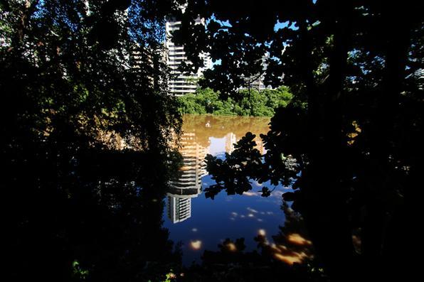 Foto da margem do Rio Capibaribe, no dia do lançamento do projeto do parque das Capivaras, no Recife. Foto: Thalyta Tavares/ Diario de Pernambuco. -