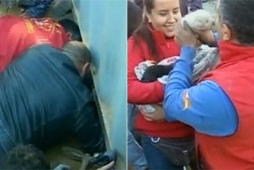 O corpo de bombeiros foi responsável pelo resgate dos animais. Foto: Telemundo/Reprodução