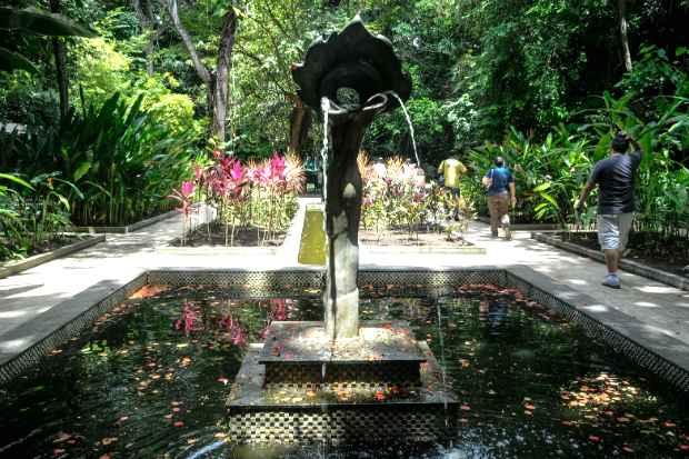 Jardim Botânico tem  jardim sensorial, meliponário, bromeliário, orquidário, entre outros. (Foto: Irandi Souza/PCR/Divulgação)