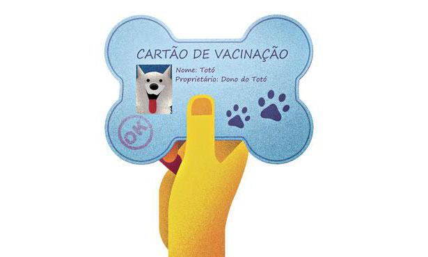 ão duas as categorias de vacinas: as obrigatórias e as recomendadas. Arte: CB/D.A Press