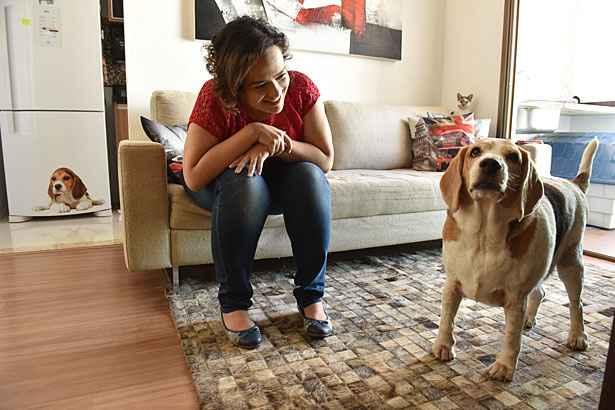 Jack chegou a pesar 34 quilos. A dona, Letícia, ficou preocupada quando percebeu que ele estava mancando. Foto: Zuleika de Souza/CB/D.A Press