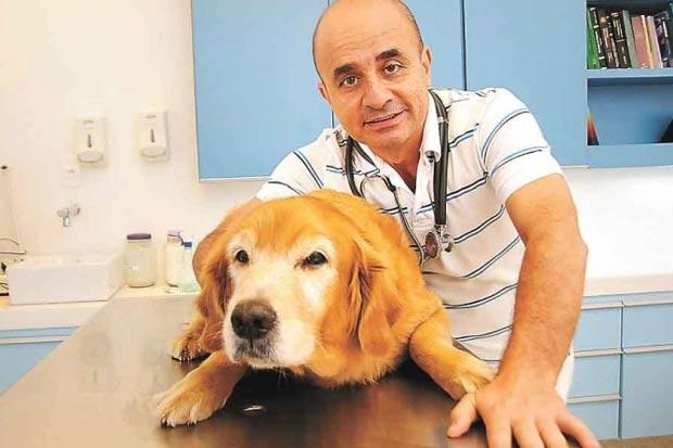 Veterinário José Geraldo Lasmar diz que o animal precisa ter um lugar que identifique como seu para sentir que ali é seu refúgio. Foto: Cristina Horta/EM/D.A Press