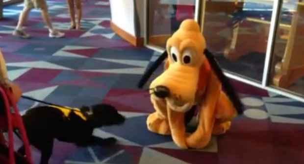 Parece que Higbee encontrou o maior ídolo na Disney. (Foto: Reprodução/Facebook)