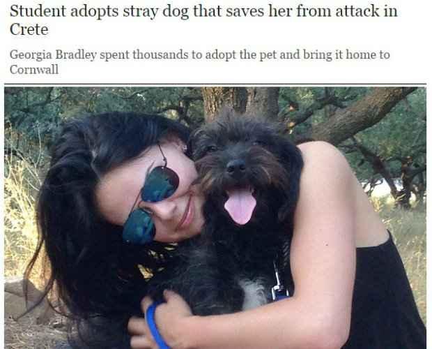 Georgia adotou Pepper após a cachorrinha salvá-la de ataque na Grécia. (Foto: Reprodução/telegraph.co.uk)