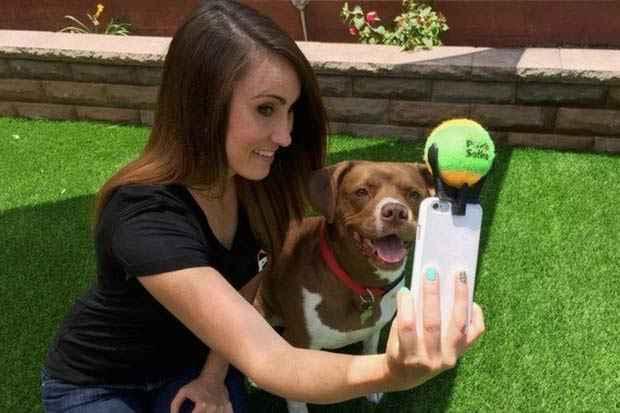 O Pooch Selfie deve ser lançado ainda esse ano pelo preço de US$ 13 (por volta de R$ 50). Foto? Divulgação