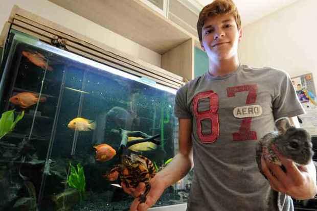Arthur Viana tem peixes exóticos, tartarugas e chinchilas (Jair Amaral/EM.D.A.Press)