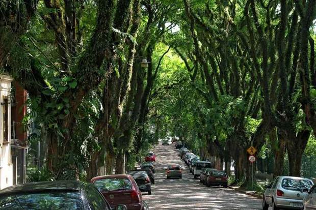 Foto: Amigos da Rua Gonçalo de Carvalho/Flickr