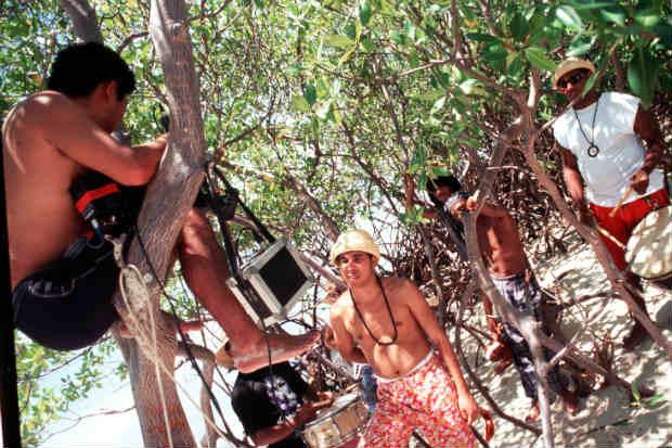 Manguezais eram cenário explorados pela Nação Zumbi em videoclipes. Foto: Fred Jordão/DP