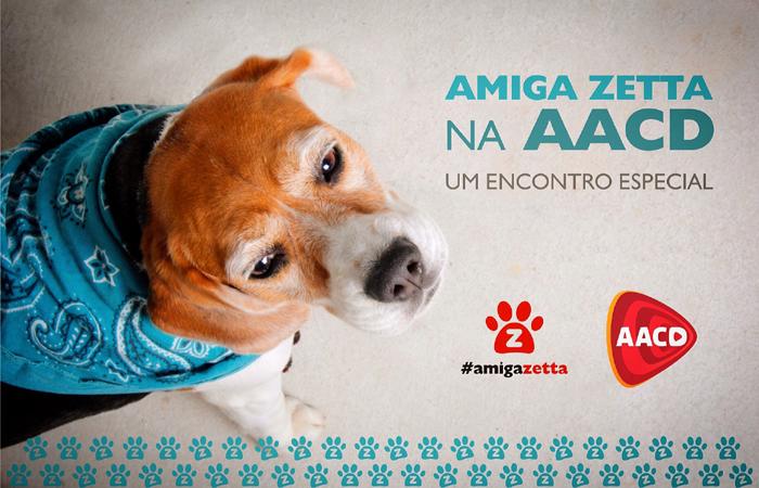 Zetta, cadelinha mascote do projeto, estará presente e vai recepcionar as crianças. Foto: Divulgação