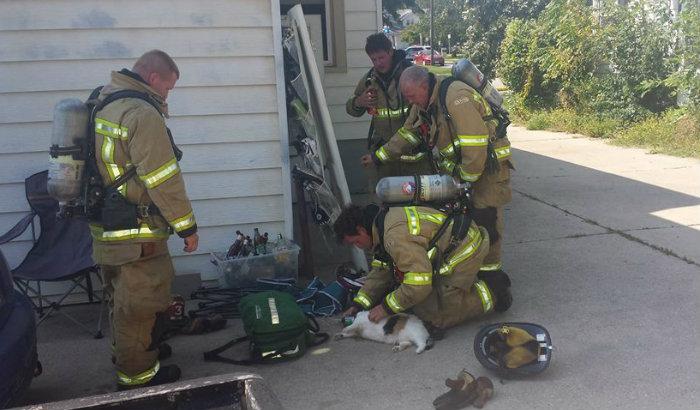 Bombeiros de Ames trabalhando na reanimação de Cleo. Foto: Ames Fire Department/Facebook/Reprodução