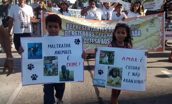 No ano passado, o movimento reuniu cerca de 300 pessoas no Recife. Foto: Divulgação