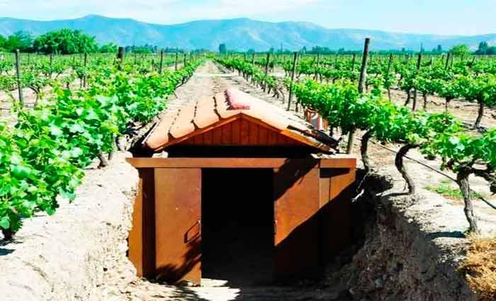 O Chile é uma ótima opção de destino para quem quer apreciar bons vinhos. Foto: Glauber Ribeiro/Flickr/Reprodução