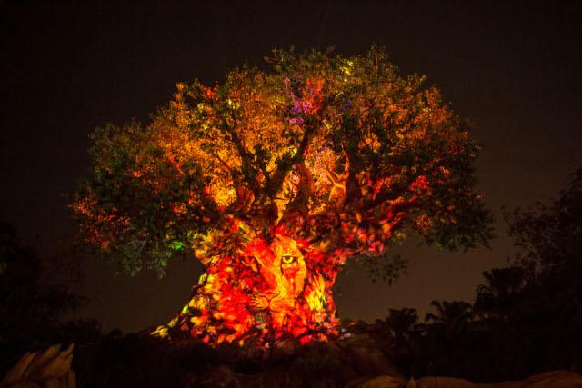 Árvore da vida, no Animal Kindgom, agora tem projeção noturna. Crédito: Divulgação Walt Disney World (Divulgação Walt Disney World)