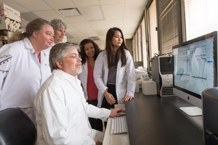 O pesquisador Joel Rovnak confere com sua equipe os resultados do estudo: diagnóstico em humanos é desafio maior. Foto: John Eisele/Colorado State University/Divulgação