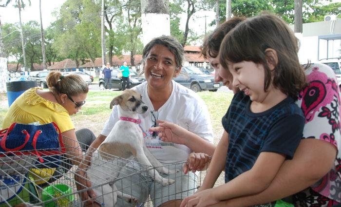 Adoção de cães e gatos domingo no Parque de Exposições do Cordeiro. Foto: Blenda Souto Maior/DP