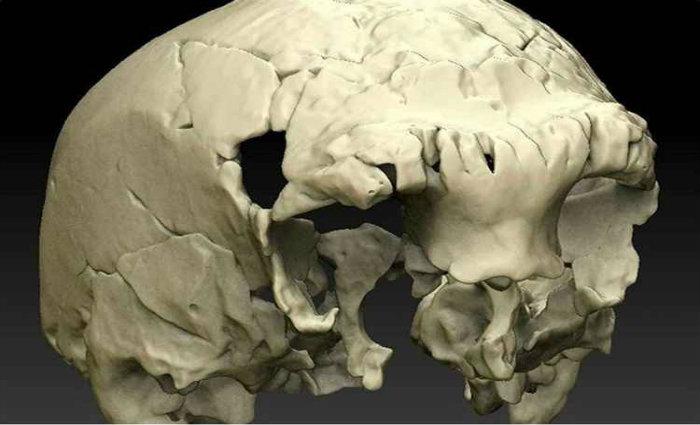 Os cientistas conseguiram definir a idade dos fósseis graças às novas tecnologias. Foto: Twitter/Reprodução