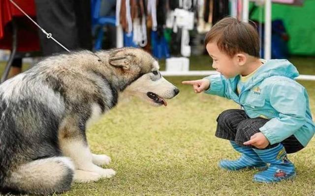 Estudos já demonstraram que o convívio de animais com crianças pode prevenir alergias. Foto: Park Ji-Hwan/AFP