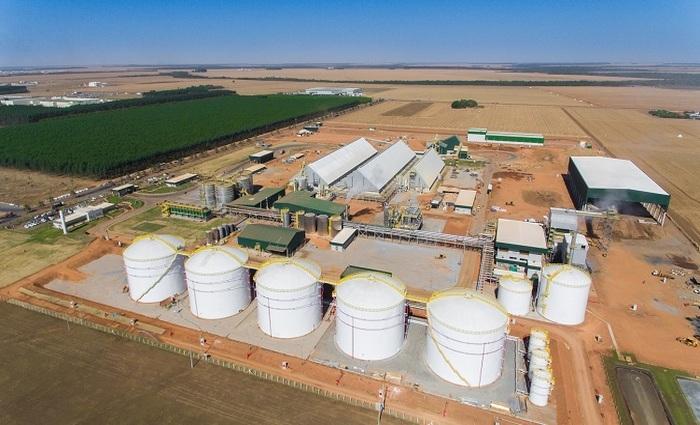 O Brasil tem uma indústria de bioenergia em expansão que usa os resíduos de gramíneas como biomassas dedicadas para produzir bio-etanol - Foto: FBSEnergia/Divulgação