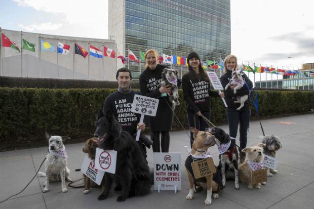 Ativistas e cães foram às ruas com cartazes de protesto, bandanas e pequenas faixas para demonstrar apoio. Foto: The Body Shop/Divulgação