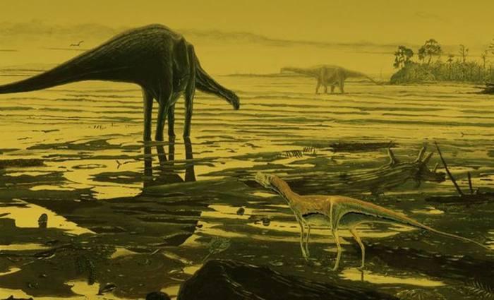 A Terra enfrenta a primeira extinção em massa de espécies desde o desaparecimento dos dinossauros. Foto: Jon Hoad/Divulgacao