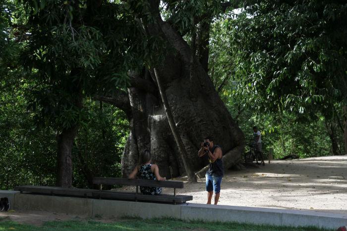 O espaço público foi indicado pela Prefeitura do Recife como o local que vai receber a árvore solar na cidade. Foto: Nando Chiappetta/DP.