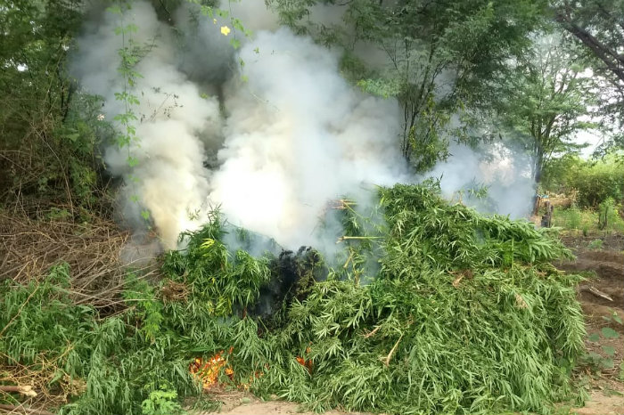 A droga foi incinerada no local. Foto: Polícia Militar/Divulgação