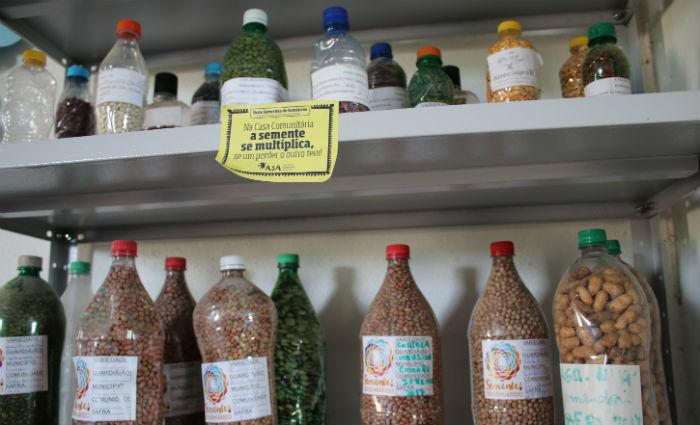 Insumos ficarão guardados e serão emprestados na hora ideal para o plantio. Foto: Verônica Pragana/Divulgação