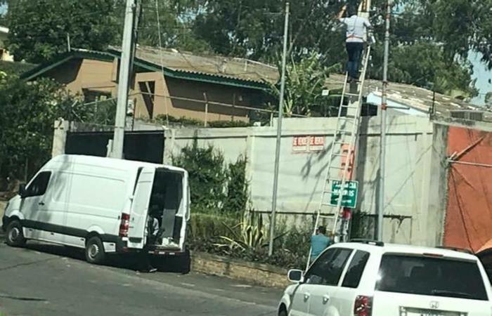 (Foto: Divulgação )