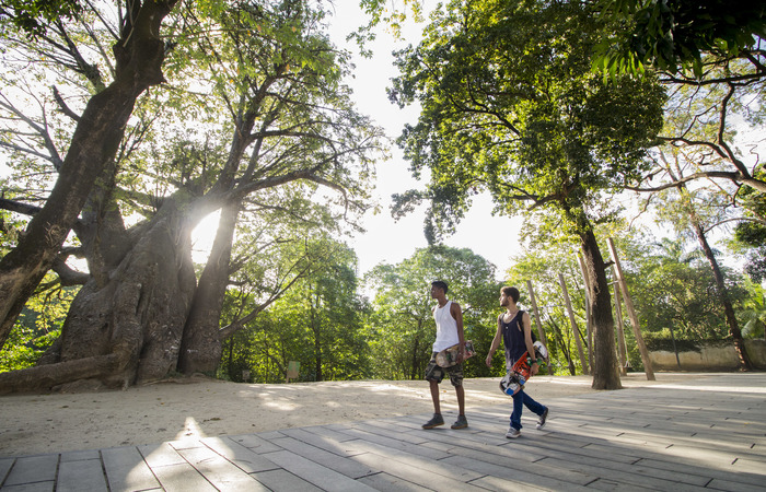 Antes da urbanização o Baobá ficava escondido e o rio também não era acessível. Foto: Leo Malafaia/Esp. DP