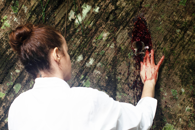 Artista usou o próprio sangue menstrual %u2013 coletado durante nove meses. Foto: Itaú Cultural/Divulgação