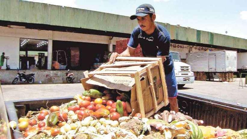 Comida jogada fora seria suficiente para alimentar todos os 800 milhões de famintos do mundo quatro vezes. Foto: TV Brasil/Divulgação